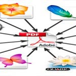 File Conversion Services
